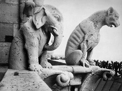 Notre Dame: Gargoyles-Eug?ne Viollet-le-Duc-Stretched Canvas Print
