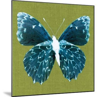 Green Pop Butterfly-Christine Caldwell-Mounted Art Print