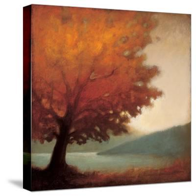 Solitude-Edward Raymes-Stretched Canvas Print
