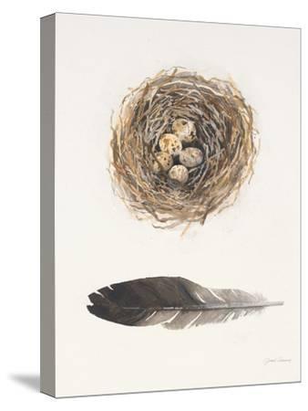 Field Study Nest-Jurgen Gottschlag-Stretched Canvas Print