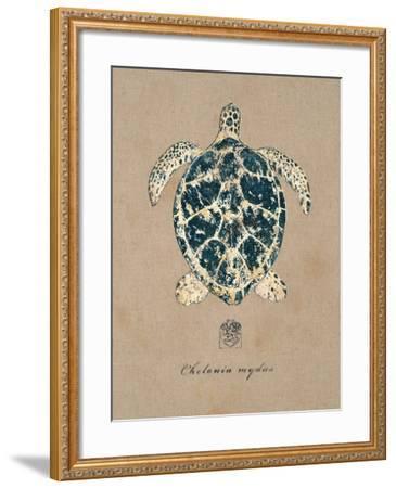 Vintage Linen Tortoise-Regina-Andrew Design-Framed Art Print