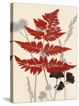 October Fern 1-Bella Dos Santos-Stretched Canvas Print