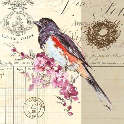 Bird Sketch 3-Chad Barrett-Framed Art Print