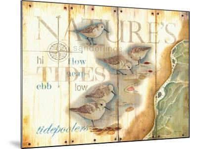 Nature's Tidepoolers-Mary Escobedo-Mounted Art Print