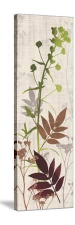 Rainforest Silhouettes 1-Bella Dos Santos-Stretched Canvas Print
