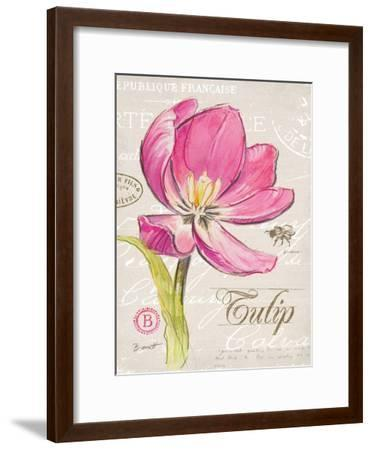 Sketchbook Tulip-Chad Barrett-Framed Art Print