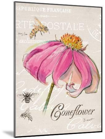 Sketchbook Coneflower-Chad Barrett-Mounted Art Print