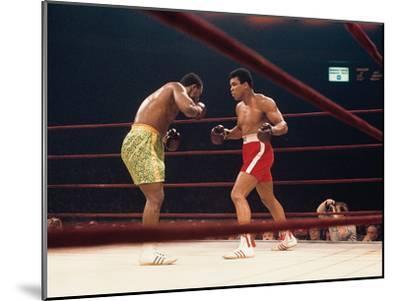 "Muhammad Ali and Joe Frazier, ""Fight of the Year"", March 8, 1971-Moneta Sleet Jr.-Mounted Photographic Print"