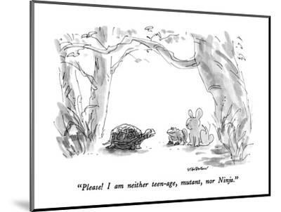 """Please!  I am neither teen-age, mutant, nor Ninja."" - New Yorker Cartoon-James Stevenson-Mounted Premium Giclee Print"