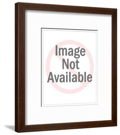 """Movie theater display sign on top that reads """"Cine Indie."""" - Cartoon-Mick Stevens-Framed Premium Giclee Print"""