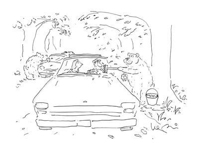 Bears in woods washing windshields. - New Yorker Cartoon-Arnie Levin-Mounted Premium Giclee Print