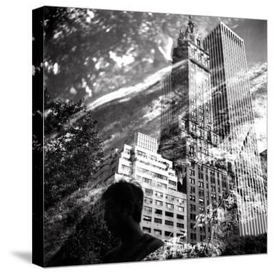 Central Park Double-Evan Morris Cohen-Stretched Canvas Print