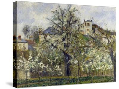 The Vegetable Garden with Trees in Blossom, 1877-Camille Pissarro-Stretched Canvas Print