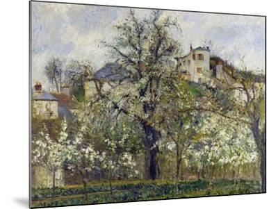 The Vegetable Garden with Trees in Blossom, 1877-Camille Pissarro-Mounted Giclee Print