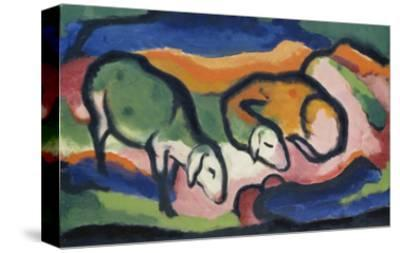 Sheep, 1912-Franz Marc-Stretched Canvas Print