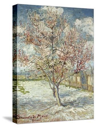 Bluehende Pfirsichbaeume (Souvenir De Mauve), 1888-Vincent van Gogh-Stretched Canvas Print