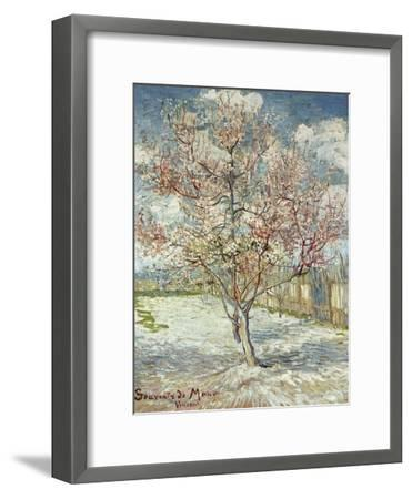 Bluehende Pfirsichbaeume (Souvenir De Mauve), 1888-Vincent van Gogh-Framed Giclee Print