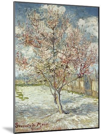Bluehende Pfirsichbaeume (Souvenir De Mauve), 1888-Vincent van Gogh-Mounted Giclee Print