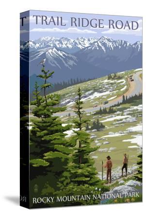 Trail Ridge Road - Rocky Mountain National Park-Lantern Press-Stretched Canvas Print