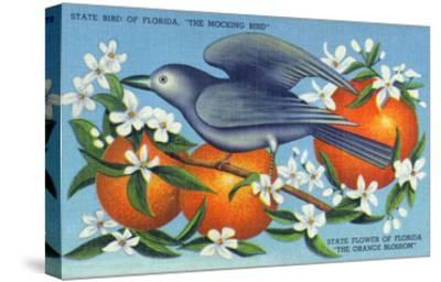 Florida - Mockingbird and Orange Blossoms, State Bird and Flower-Lantern Press-Stretched Canvas Print