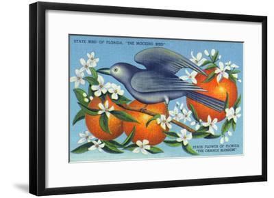 Florida - Mockingbird and Orange Blossoms, State Bird and Flower-Lantern Press-Framed Art Print