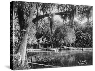Deleon Springs, Florida - Scenic View-Lantern Press-Stretched Canvas Print