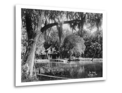 Deleon Springs, Florida - Scenic View-Lantern Press-Metal Print