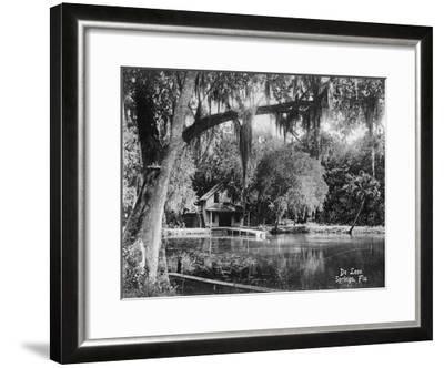 Deleon Springs, Florida - Scenic View-Lantern Press-Framed Art Print