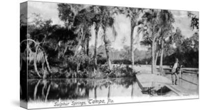 Tampa, Florida - View of Sulphur Springs-Lantern Press-Stretched Canvas Print