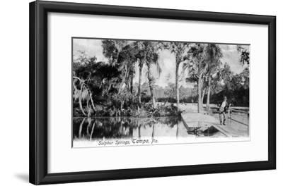Tampa, Florida - View of Sulphur Springs-Lantern Press-Framed Art Print