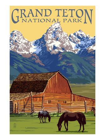 Grand Teton National Park - Barn and Mountains-Lantern Press-Stretched Canvas Print