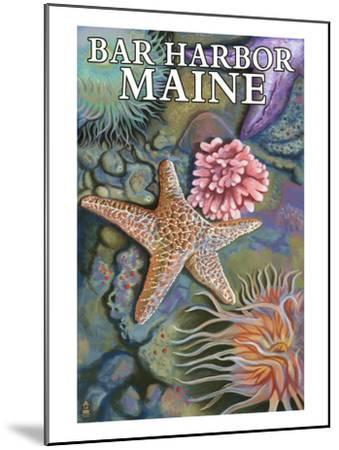Bar Harbor, Maine - Tidepool Scene-Lantern Press-Mounted Art Print