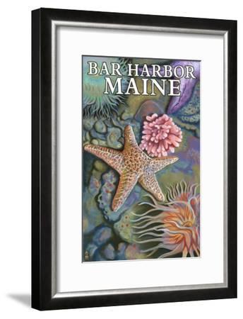 Bar Harbor, Maine - Tidepool Scene-Lantern Press-Framed Art Print