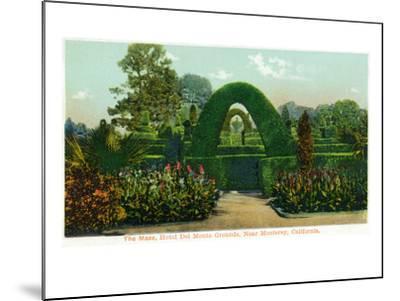 California - Hotel Del Monte View of the Maze Near Monterey-Lantern Press-Mounted Art Print
