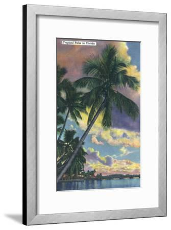 Florida - View of a Palm During Sunset-Lantern Press-Framed Art Print