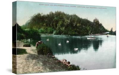 San Francisco, California - Golden Gate Park, Strawberry Hill and Stow Lake-Lantern Press-Stretched Canvas Print
