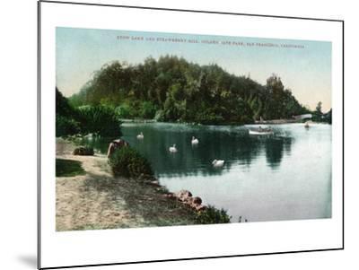 San Francisco, California - Golden Gate Park, Strawberry Hill and Stow Lake-Lantern Press-Mounted Art Print