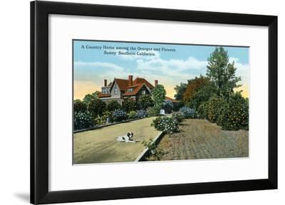 California - Country Home Among Oranges and Flowers Scene-Lantern Press-Framed Art Print