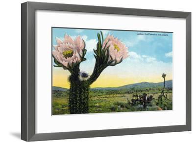 California - View of a Flowering Cactus-Lantern Press-Framed Art Print