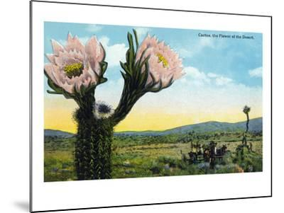 California - View of a Flowering Cactus-Lantern Press-Mounted Art Print