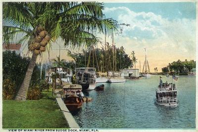 Miami, Florida - Miami River from Budge Dock-Lantern Press-Stretched Canvas Print