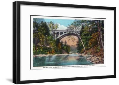 Philadelphia, Pennsylvania - Walnut Lane Bridge over Wissahickon River-Lantern Press-Framed Art Print