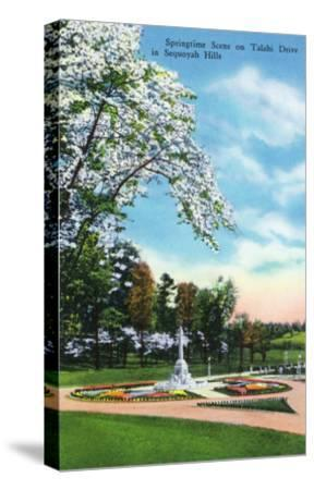 Knoxville, Tennessee - Springtime Scene on Talahi Drive in the Sequoyah Hills-Lantern Press-Stretched Canvas Print