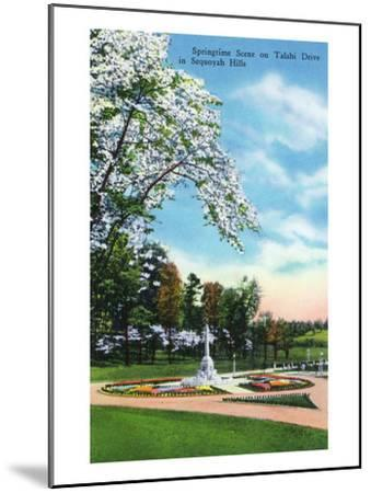 Knoxville, Tennessee - Springtime Scene on Talahi Drive in the Sequoyah Hills-Lantern Press-Mounted Art Print