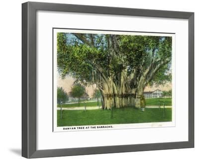 Key West, Florida - Barracks Banyan Tree Scene-Lantern Press-Framed Art Print