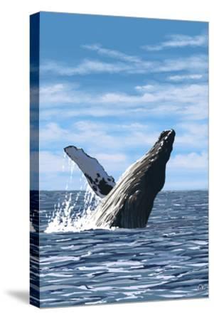 Humpback Whale - Ocean-Lantern Press-Stretched Canvas Print