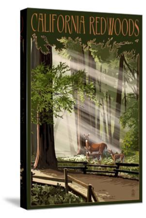 California - Deer and Fawns in Redwoods-Lantern Press-Stretched Canvas Print