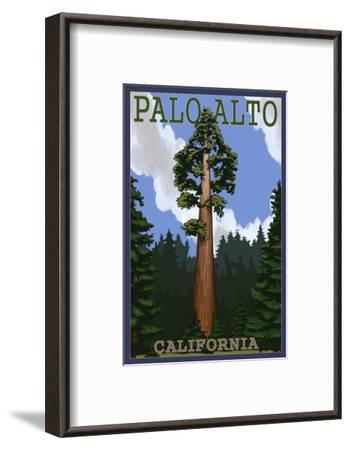 Palo Alto, California - California Redwoods-Lantern Press-Framed Art Print