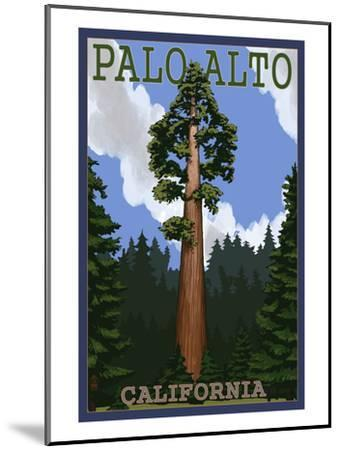 Palo Alto, California - California Redwoods-Lantern Press-Mounted Art Print