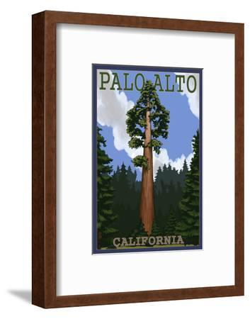 Palo Alto, California - California Redwoods-Lantern Press-Framed Art Print